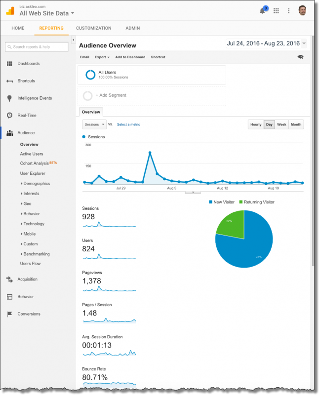 Analytics - Audience Overview